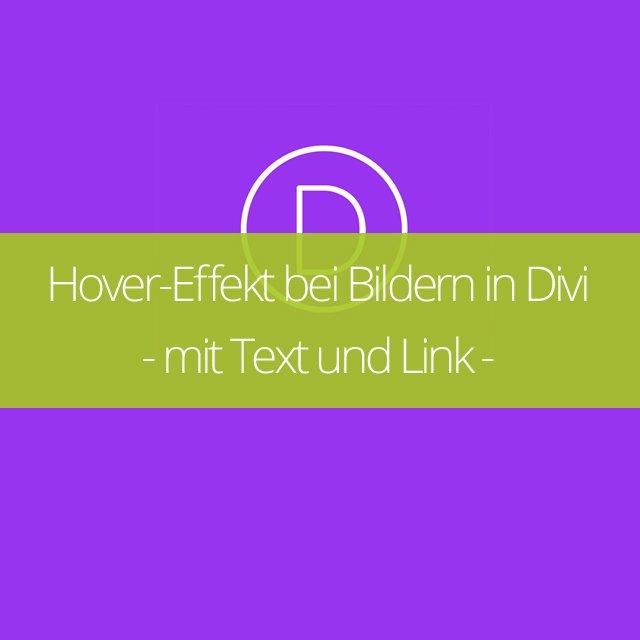 Hover-Effekt bei Bildern in Divi – mit Text und Link