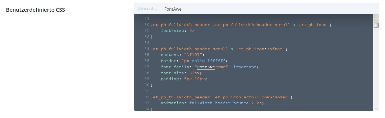 Benutzerdefinierte CSS - Alte CSS Angabe für FontAwesome suchen
